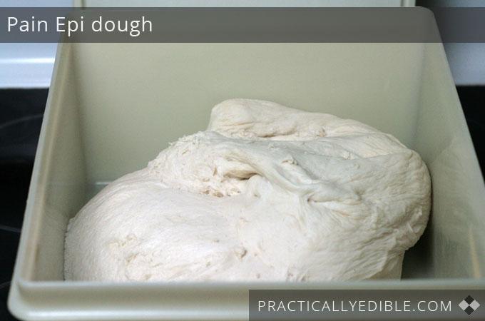 Pain epi dough